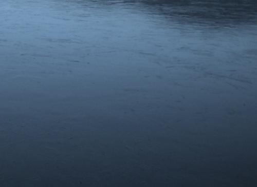 bords de mer60136.JPG