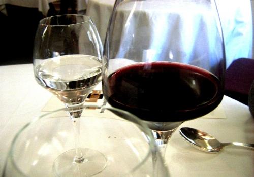 in vino 2.jpg