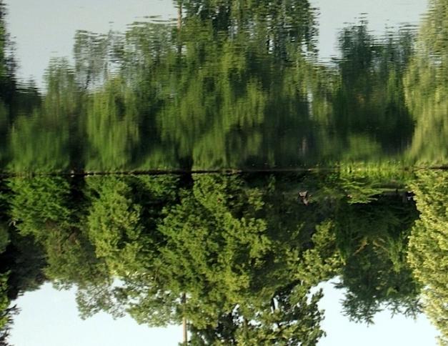 reflets_0027.JPG